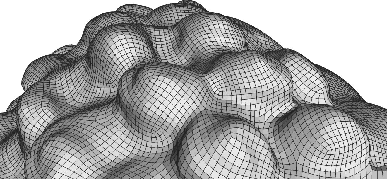 Fully Automatic generated QuadCover Mesh